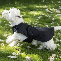 Dog RainCoat  By Cosipet