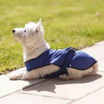 Dog Cooling Coat by Ancol - Small