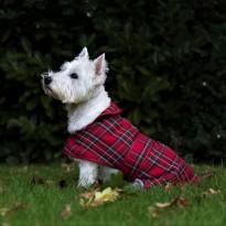 Red Tartan Dog Coat