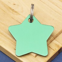 Star Pet Identity Tag Green