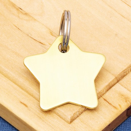 Solid Brass Star Pet Id Tag
