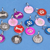 10 Engraved Pet Tags Glitter