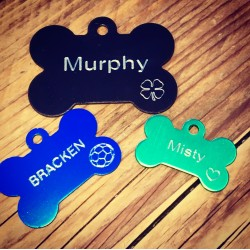 10 Engraved Bone Pet Tags