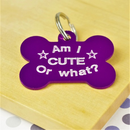 Cute or What Fun Pet Tag