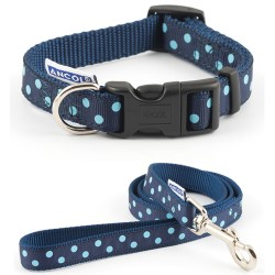 Collar and Lead Set Blue Spot