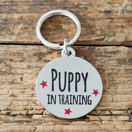 Puppy In Training Pet Tag