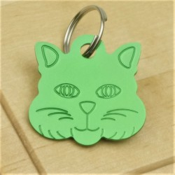 Cat Identity Tag Green