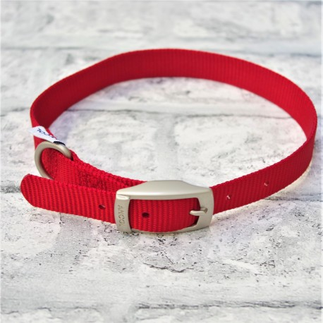 Red Buckle Collar