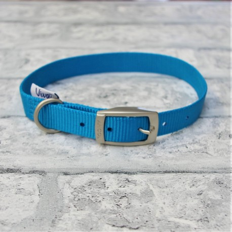 Blue Buckle Collar