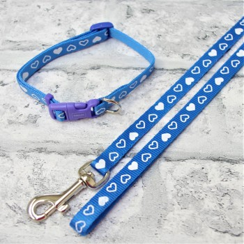 Blue Puppy Collar and Lead Set