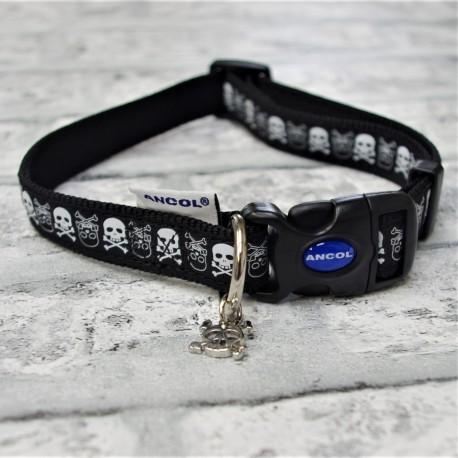 Skull Dog  Collar