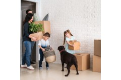 6 Must-Do things to plan before you move home with pets