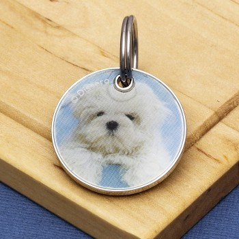Puppy Dog Id Tags
